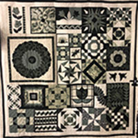 Fortnightly Sampler Quilt - with Sue